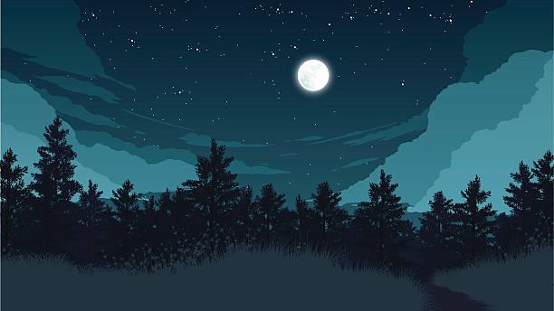 forest landscape illustration - skies stock illustrations, clip art, cartoons, & icons