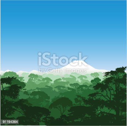 Forest Landscape with volcano