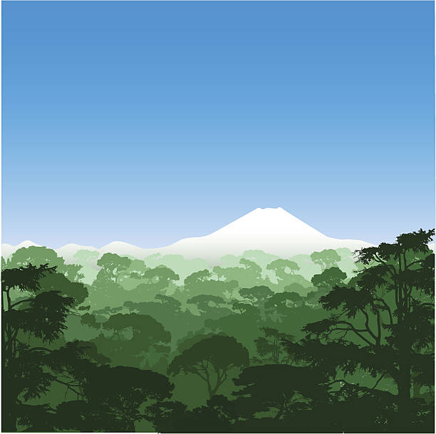 stockillustraties, clipart, cartoons en iconen met forest landscape - nationaal monument beroemde plaats