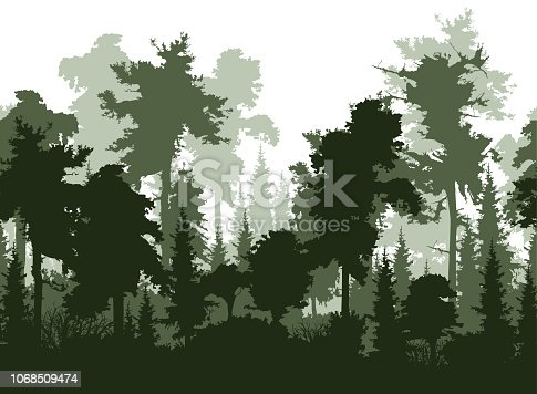 Forest landscape with high pine and fir tree silhouettes, horizontal seamless vector background ready for parallax effect.