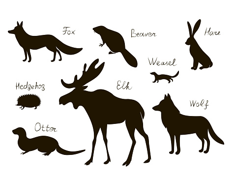 Forest north animals. Vector black drawing silhouette image set.