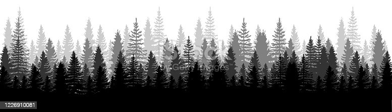 istock Forest Panorama view. Pines. Spruce nature landscape. Forest background. Set of Pine, Spruce and Christmas Tree on White background. Silhouette forest background. Vector illustration 1226910081