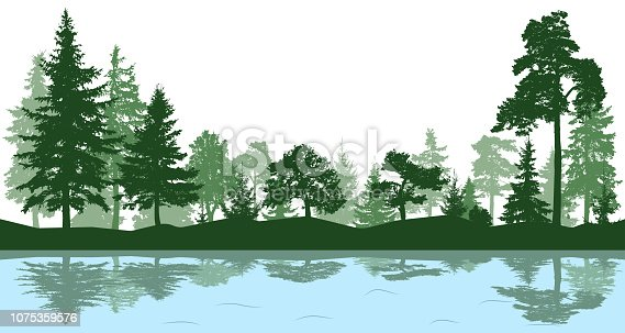 Forest, park, alley. Landscape of isolated trees. Reflection of trees in the water. Silhouette vector