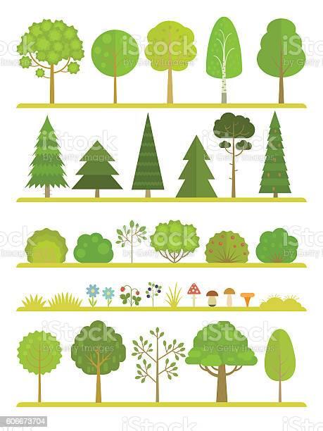 Forest plants collection vector id606673704?b=1&k=6&m=606673704&s=612x612&h=sqdw22ziijingldqvy6hmcgvpcuvvgk0 t56iwl8lg0=