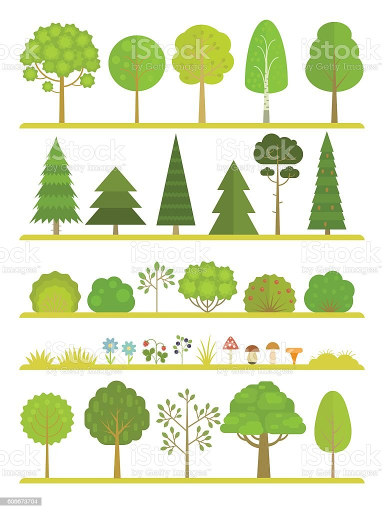 Forest plants collection vector art illustration
