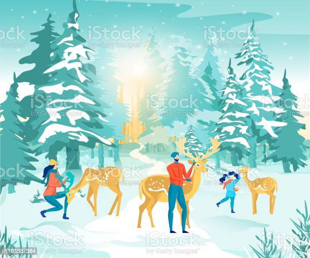Forest reserve in winter family feeding pet deer vector id1193537384?b=1&k=6&m=1193537384&s=612x612&h= oi9zod2sb 539h x xmcw4is5c q7lcjwfstdy 3uc=