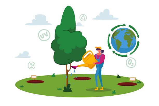 stockillustraties, clipart, cartoons en iconen met bosherstel, herbebossing en het planten van nieuwe bomen. vrouw vrijwilliger karakter zorg van groene plant, save nature - woman water