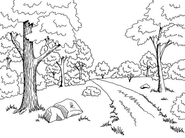 Royalty Free Forest Road Graphic Art Black White Landscape