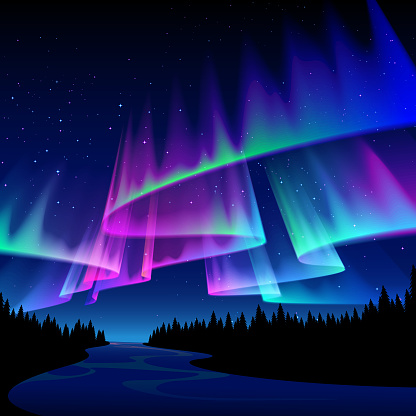 A forest night scene with aurora in the sky.