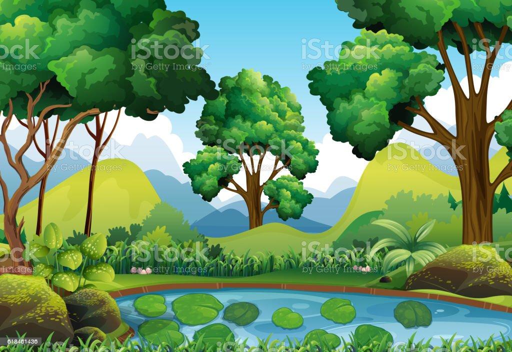 Forest scene with trees and pond – Vektorgrafik
