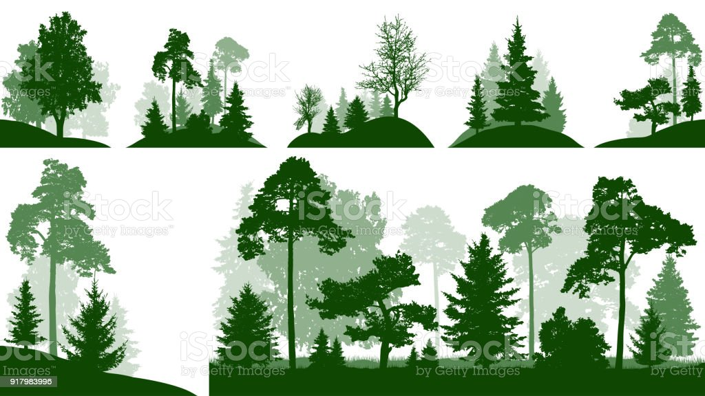 Forest set, trees in the park, silhouette isolated vector vector art illustration