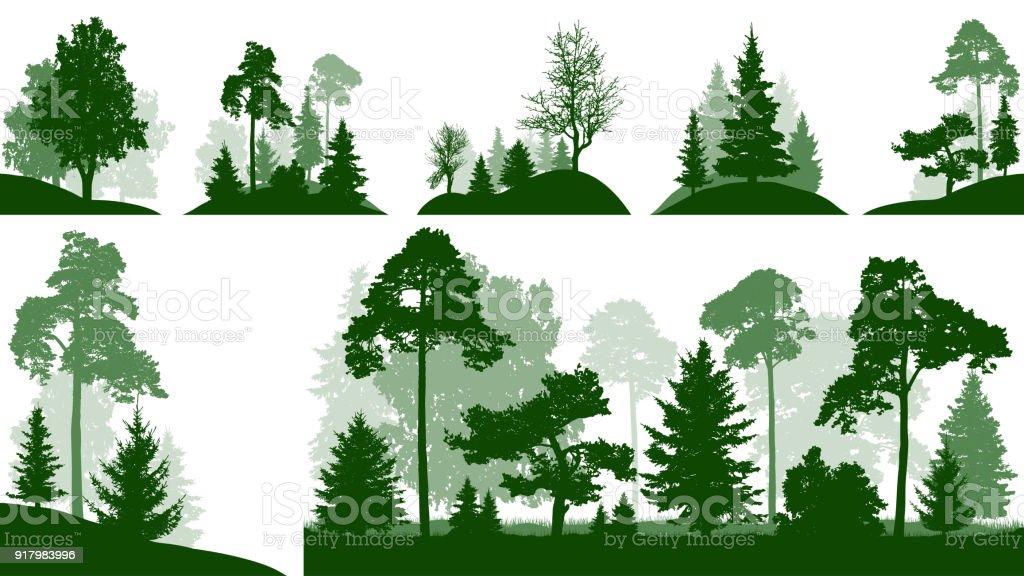 Sistema de bosque, árboles en el parque, vector aislada silueta - ilustración de arte vectorial