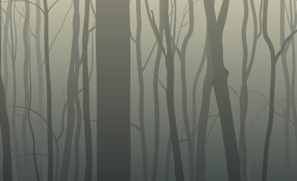 bildbanksillustrationer, clip art samt tecknat material och ikoner med forest siluett bakgrund - rovdjur