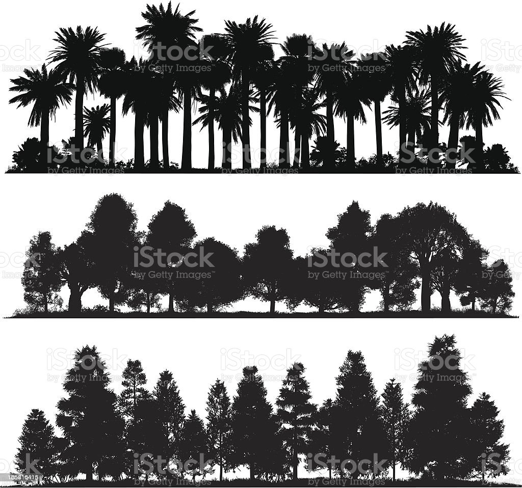 Forest silhouettes vector art illustration