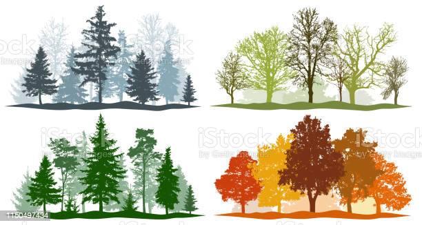 Forest trees winter spring summer autumn 4 seasons vector vector id1150497434?b=1&k=6&m=1150497434&s=612x612&h=bfvqdtrzhjux1a9w5xqataqpiulwwxjws7upaqbfx8a=