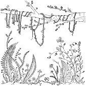 Forest undergrowth (ferns, flowers, vines, berries) hand drawn coloring page