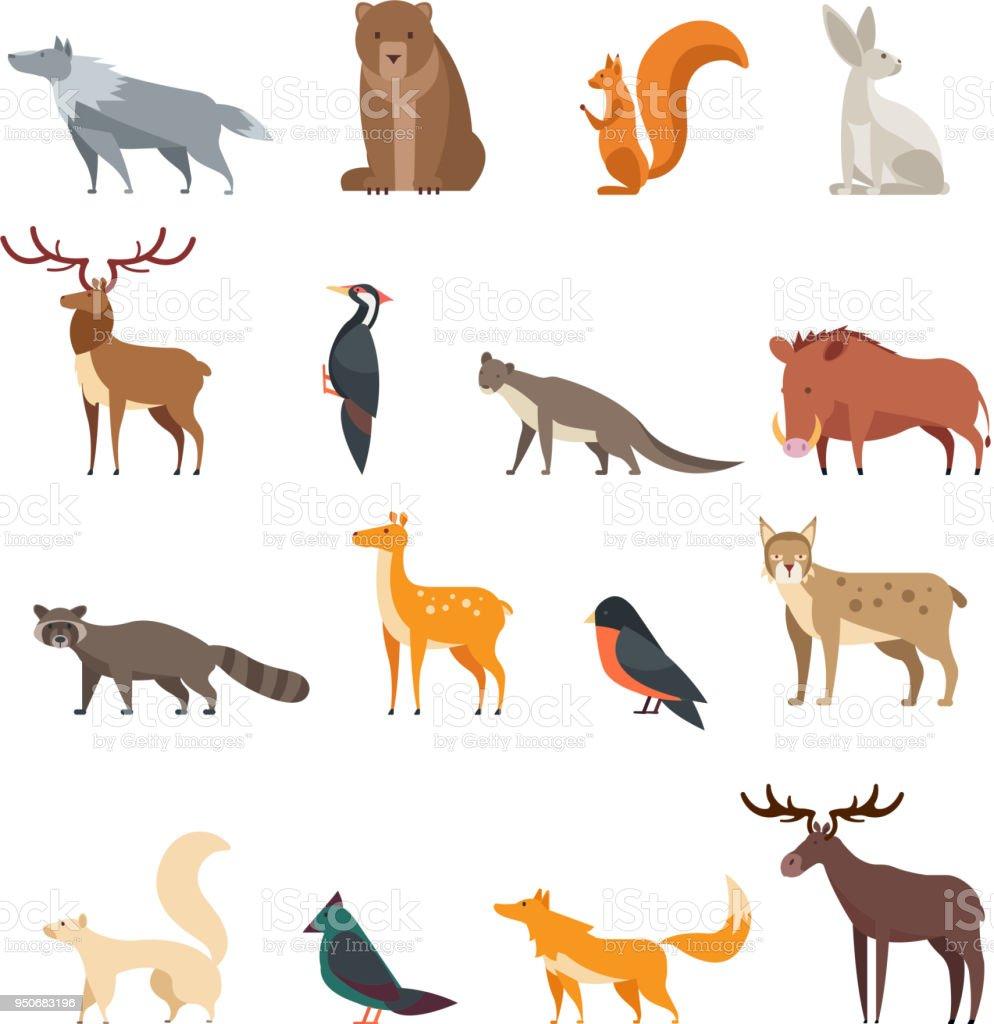 森林野生動物や鳥のベクトル分離設定の漫画します。鹿、熊、ウサギ、リス、オオカミ、キツネ、タヌキ、フクロウをフラットします。 ロイヤリティフリー森林野生動物や鳥のベクトル分離設定の漫画します鹿熊ウサギリスオオカミキツネタヌキフクロウをフラットします - アイコンのベクターアート素材や画像を多数ご用意