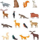 Forest wild animals and birds cartoon vector set isolated. Flat deer, bear, rabbit, squirrel, wolf, fox, raccoon, owl. Wild forest animal, cartoon character collection illustration