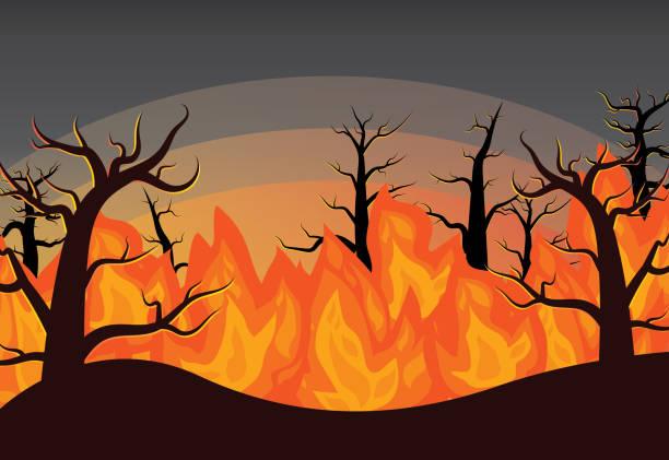 stockillustraties, clipart, cartoons en iconen met forest wildfire vector illustratie achtergrond - illustraties van bosbrand