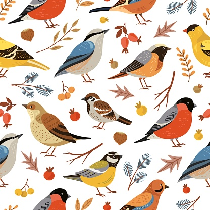 Forest winter birds pattern. Forest animal background, flat snowy tree branches. Holiday bullfinch leaves berries, wildlife vector texture