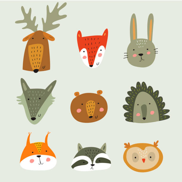 illustrazioni stock, clip art, cartoni animati e icone di tendenza di forestanimalfaces - canide