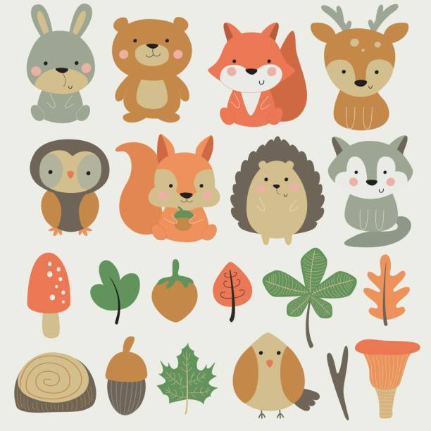 forestsmallanimalset Vector forest set with cute hare, bear, fox, deer, owl, squirrel, hedgehog, wolf, bird, mushrooms, nuts and leaves in cartoon style woodland stock illustrations
