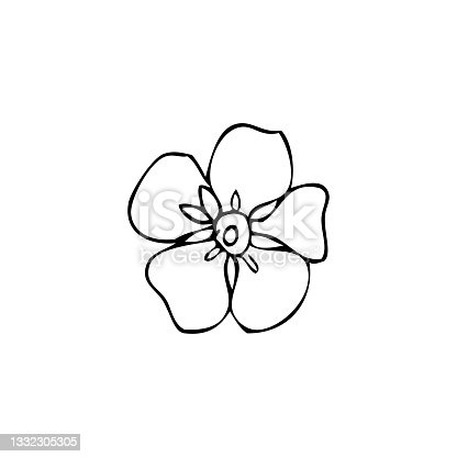 istock Forget-me-not flower vector illustration isolated on white background, ink sketch, decorative herbal doodle, line art style for design medicine, wedding invitation, greeting card, floral cosmetic 1332305305