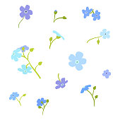istock Forget-me-not flowers vector set illustration isolated on white background.Set of flowers for design.Flowers postcard. 1325354511