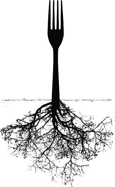Embranchement avec des racines - Illustration vectorielle