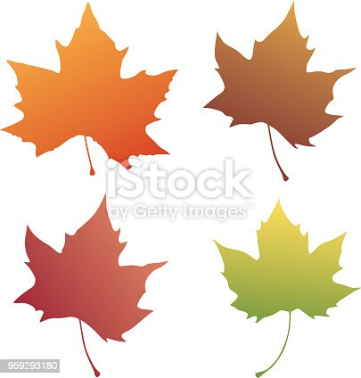 Vector illustration of four colorful autumn leaves.