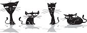 Four black cats,