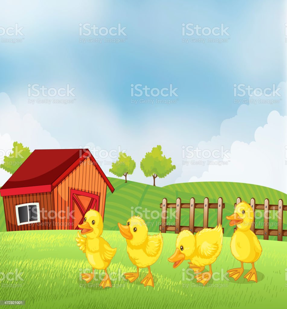 Four chicks in the farm royalty-free four chicks in the farm stock vector art & more images of agriculture