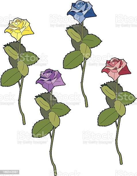 Four different colored roses vector id186343561?b=1&k=6&m=186343561&s=612x612&h=tacou4tfbk8zlprvgw7fw5ul9w zkmp4j4gsnudr2f0=