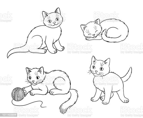 Four different kittens in outlines vector illustration vector id1011403936?b=1&k=6&m=1011403936&s=612x612&h=3hpglet0roo38g4z4gikcxenx5zbb7wkwc7wu pyosq=