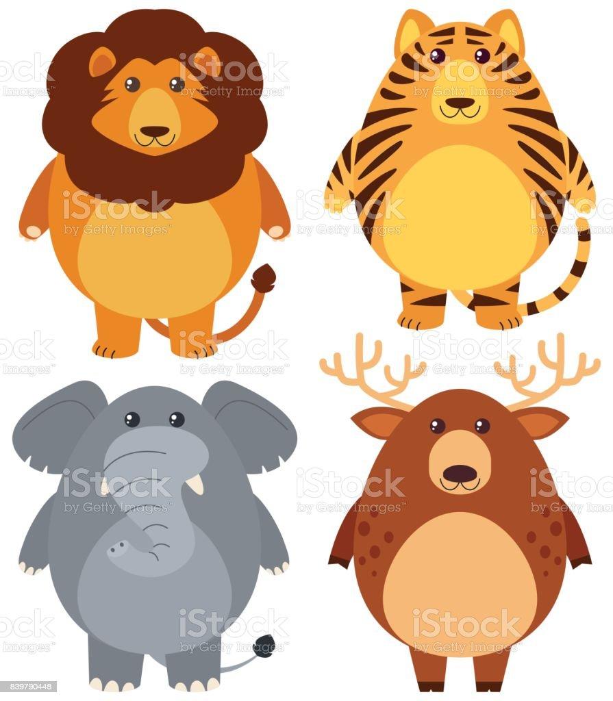 幸せそうな顔で 4 つの異なる野生動物 - アメリカ合衆国のベクターアート