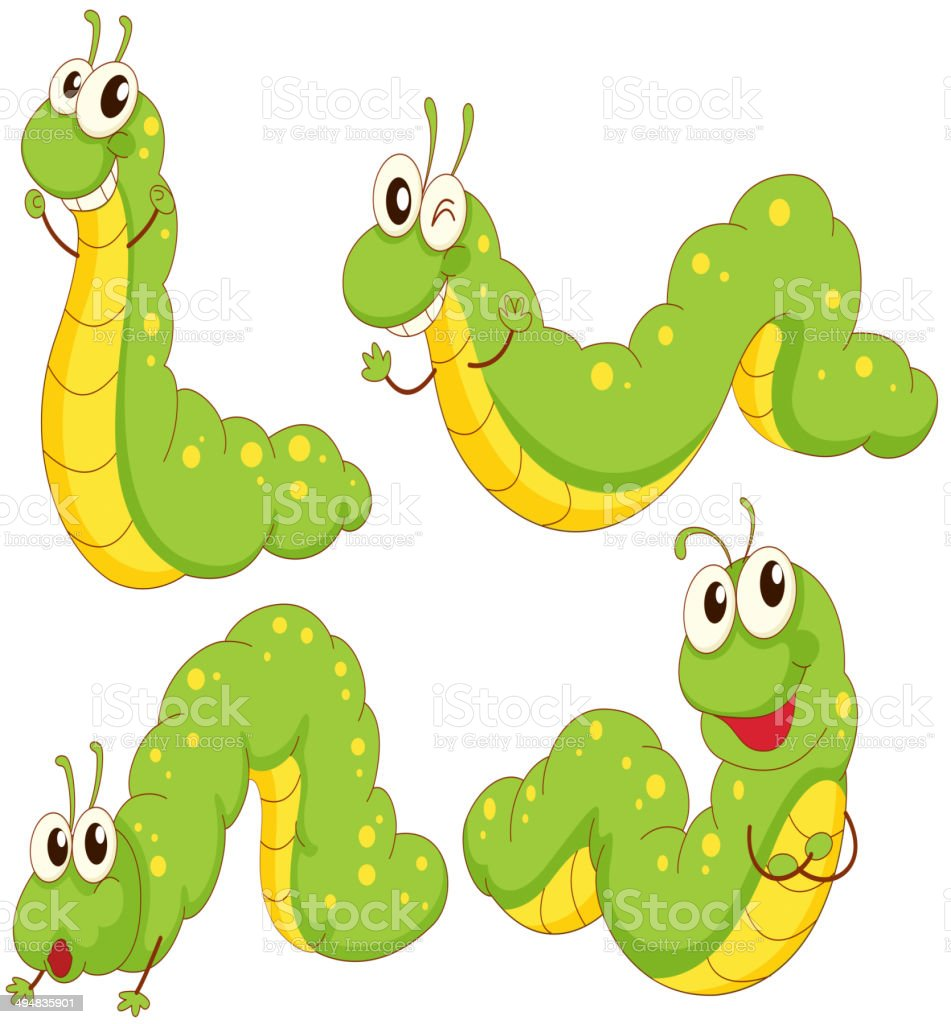 Four green caterpillars vector art illustration