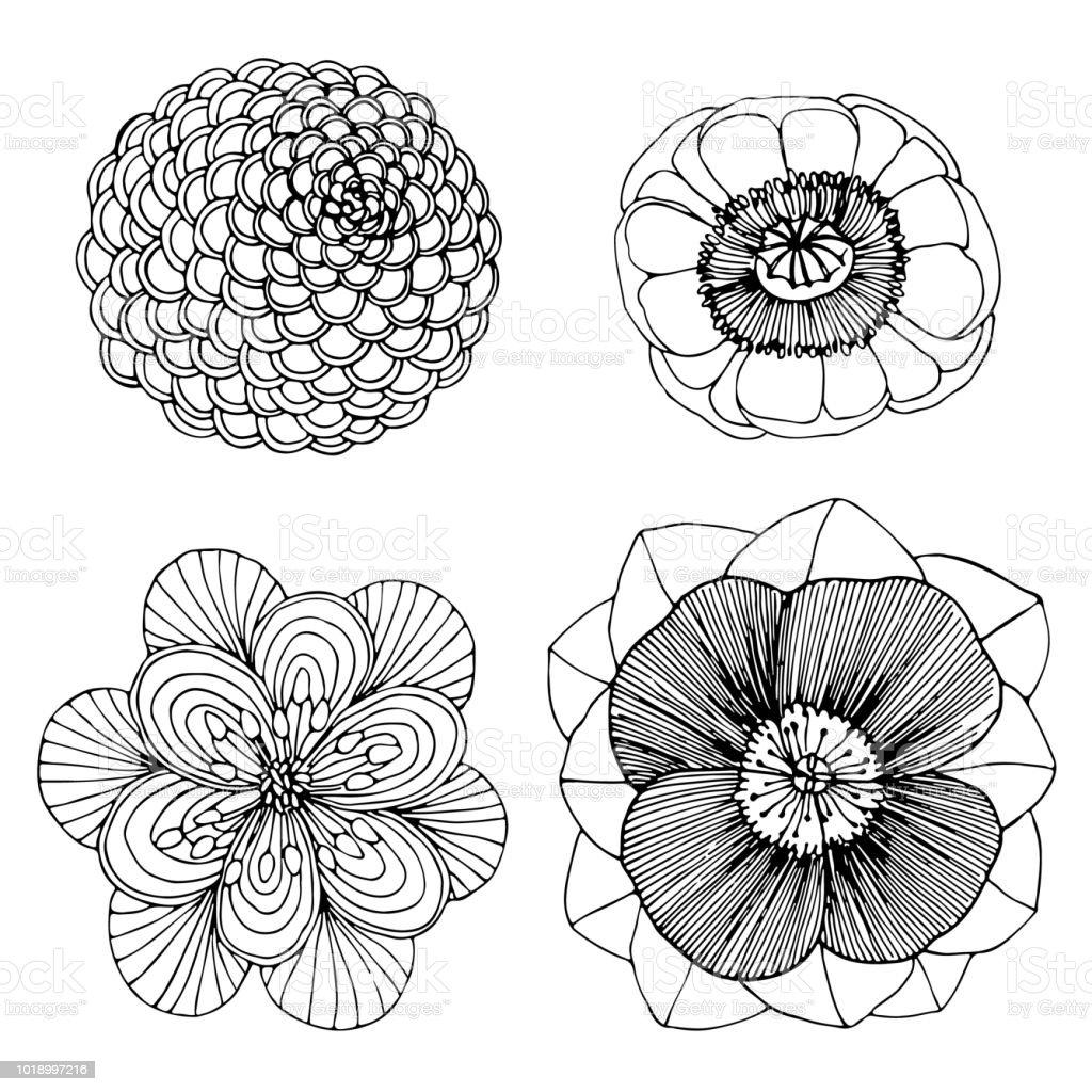 vier getekend mooie bloem kleurplaat pagina