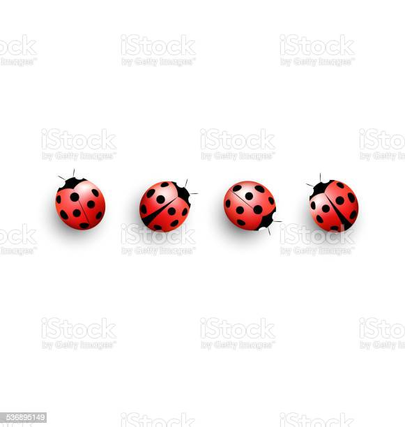 Four lady bugs isolated on white vector id536895149?b=1&k=6&m=536895149&s=612x612&h=soyauciumjed0ovl7mfgtobygmjdamzvs39w vnplrk=