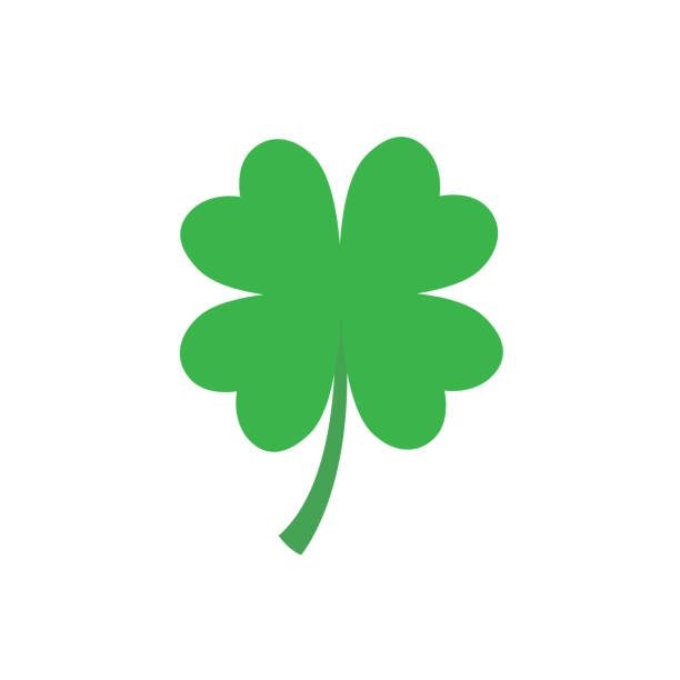 Four leaf clover icon in flat style Four-leaf clover simple icon. Vector flat illustration isolated on white background shamrock stock illustrations