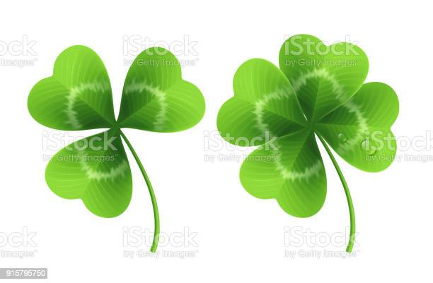 Four leaf clover isolated on white vector illustration vector id915795750?b=1&k=6&m=915795750&s=612x612&h=eoo9ojwlcxw0xdzcl7zsbqjwnasxsczayianf10dtlm=
