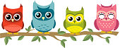 Four owls perching together