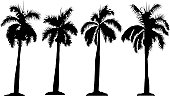 Four Palm Trees (Vector)