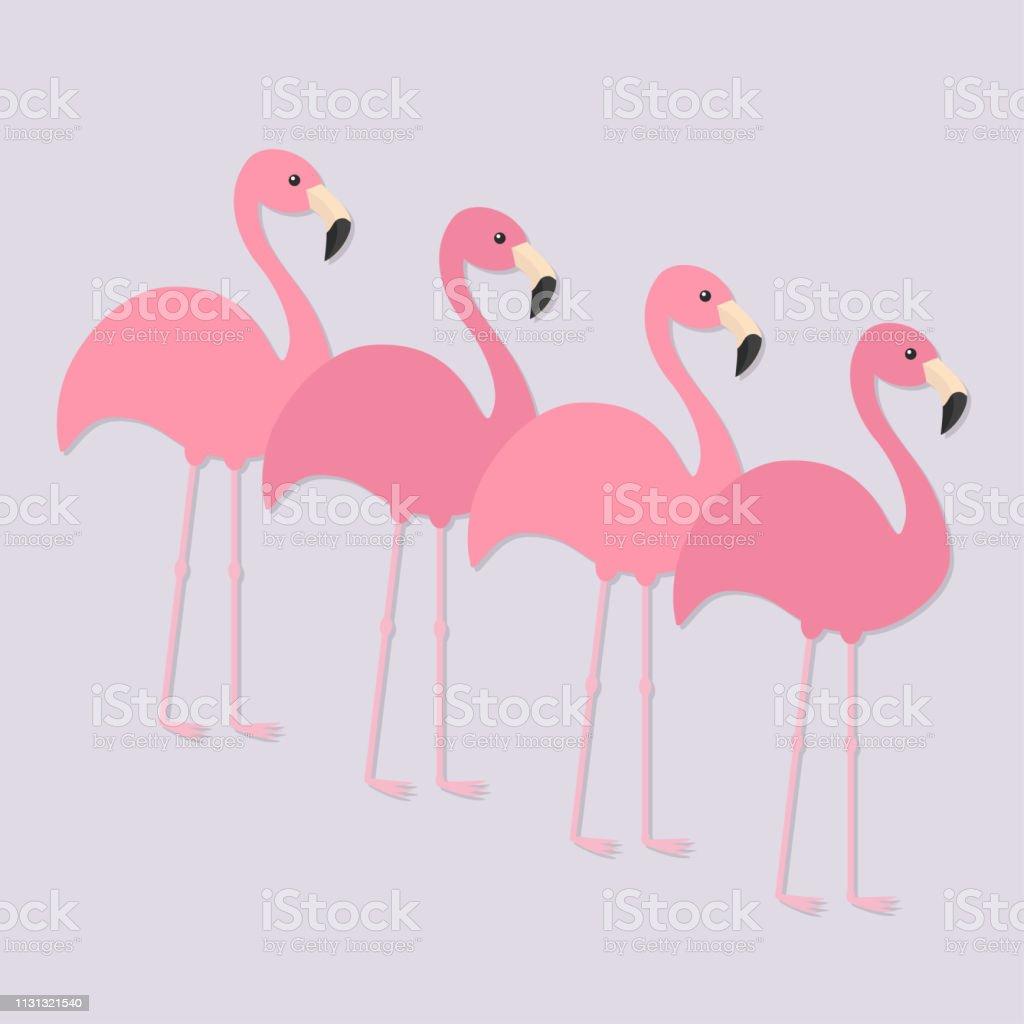 Four pink flamingo set. Exotic tropical bird. Zoo animal collection....