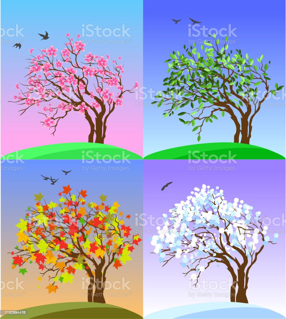 Four Seasons Banners with Abstract Tree, flying birds and Hills -...