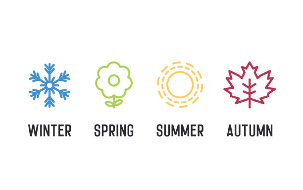 four seasons icon set. 4 vector graphic element illustrations representing winter, spring, summer, autumn. snowflake, flower, sun and maple leaf - cztery pory roku stock illustrations
