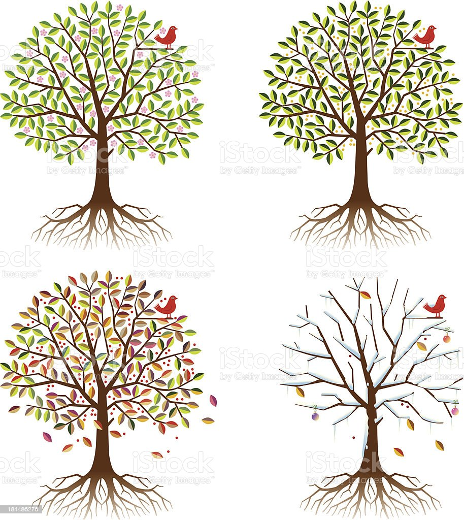 Four seasons in one tree. royalty-free four seasons in one tree stock vector art & more images of autumn