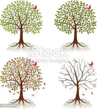 A tree and roots with resident bird, showing the same scene at different times of the year, spring, summer, autumn(fall) and winter. 4 layers with each season grouped on it's own layer.