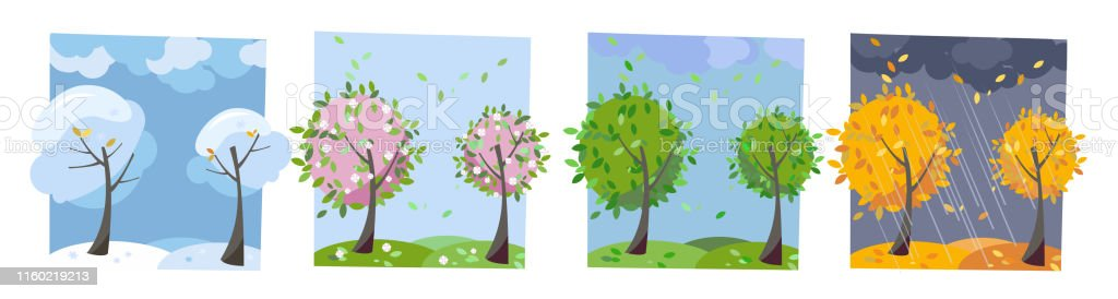 Four seasons landscape. Summer, fall, spring and winter trees....
