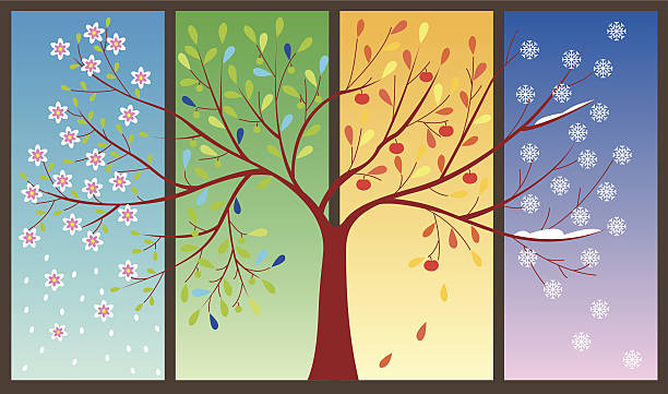 four seasons of the year - art illustration - four seasons stock illustrations