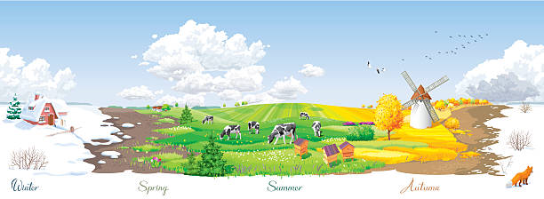 four seasons panorama - four seasons stock illustrations